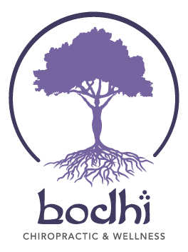 LOGO Bodhi Chiropractic and Wellness